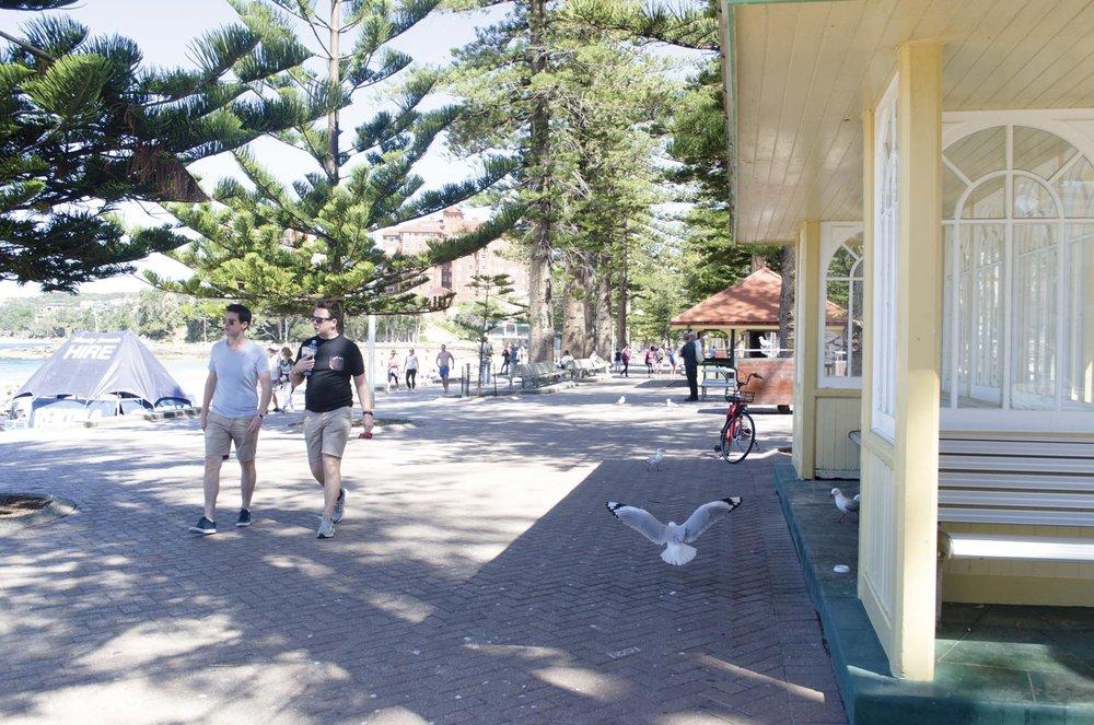 Take a stroll along Manly Promenade