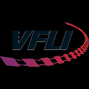 300-VFLI.png