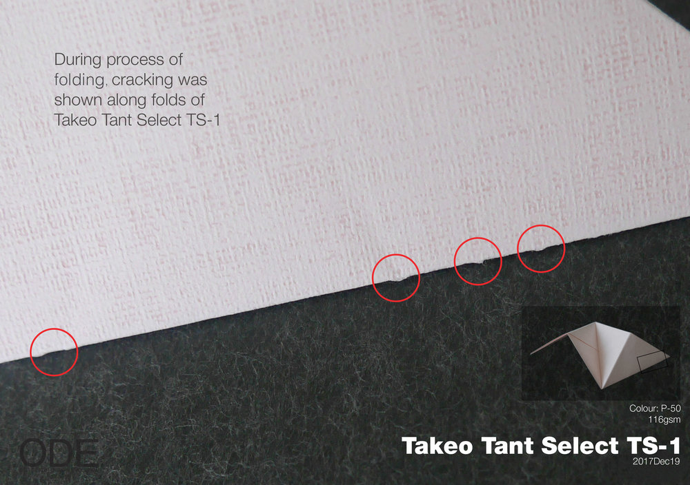 Beyond Surface. Folding endurance test of Takeo Tant Select.