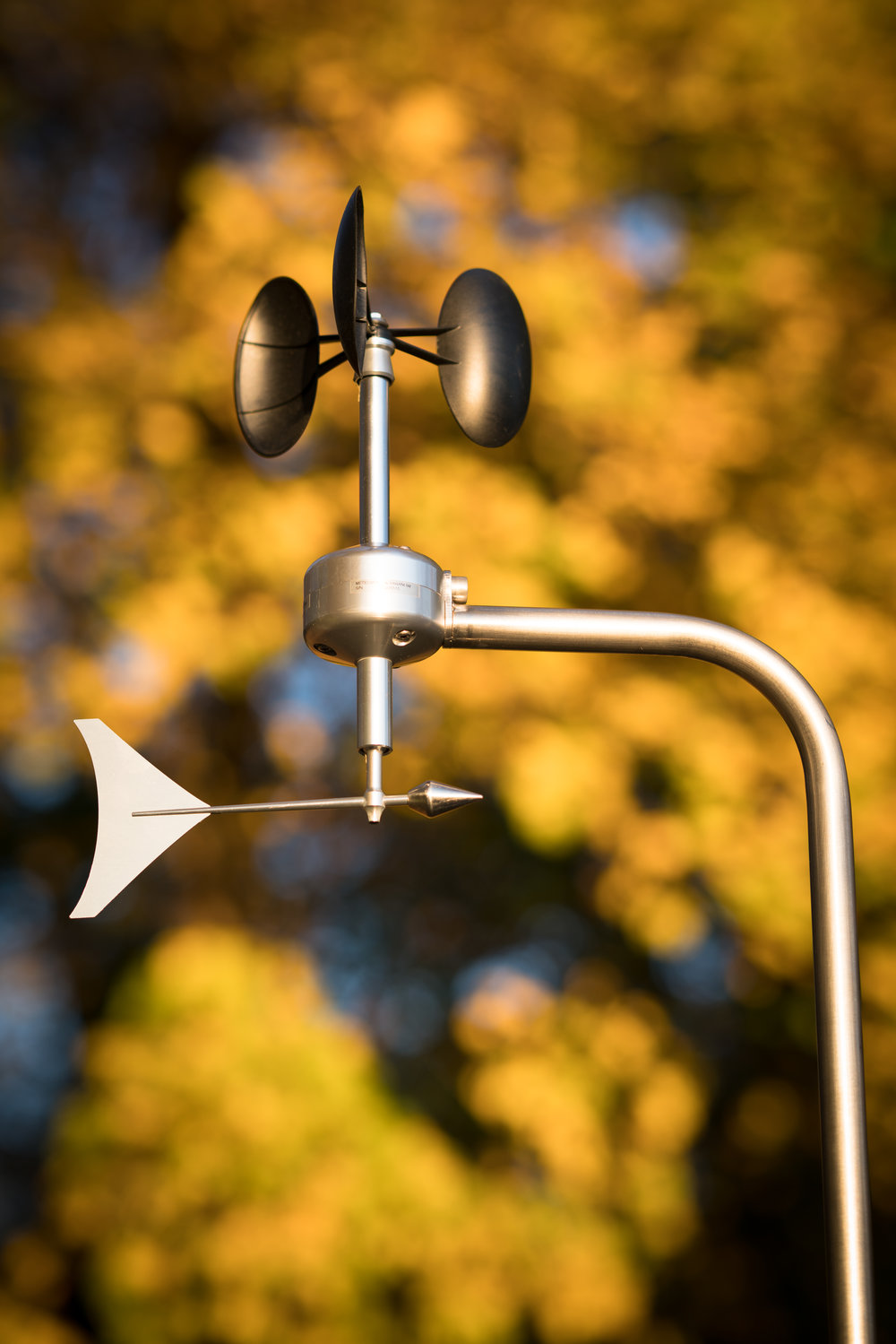 MeteoWind 1 anemometer with wind vane with autumn tree background