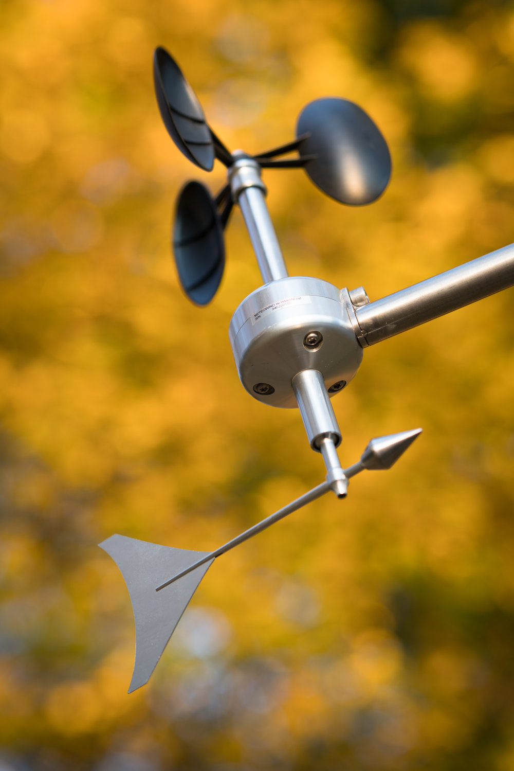 MeteoWind 1 anemometer with wind vane with fall leafs background