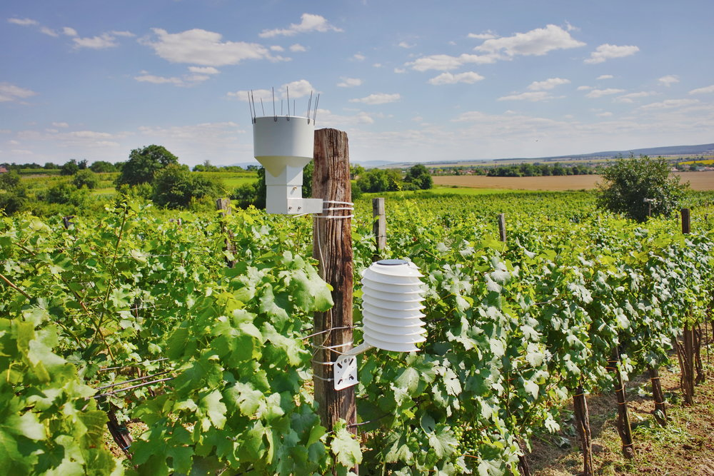 Agricultural weather station overlooking a wine yard