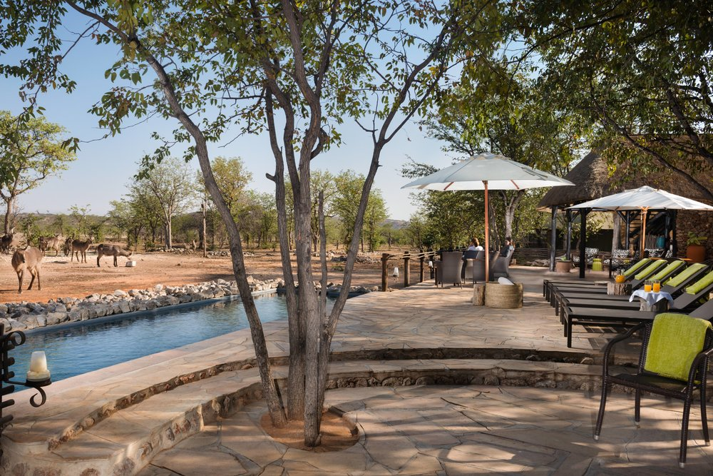yoga retreat yoga safari namibia africa