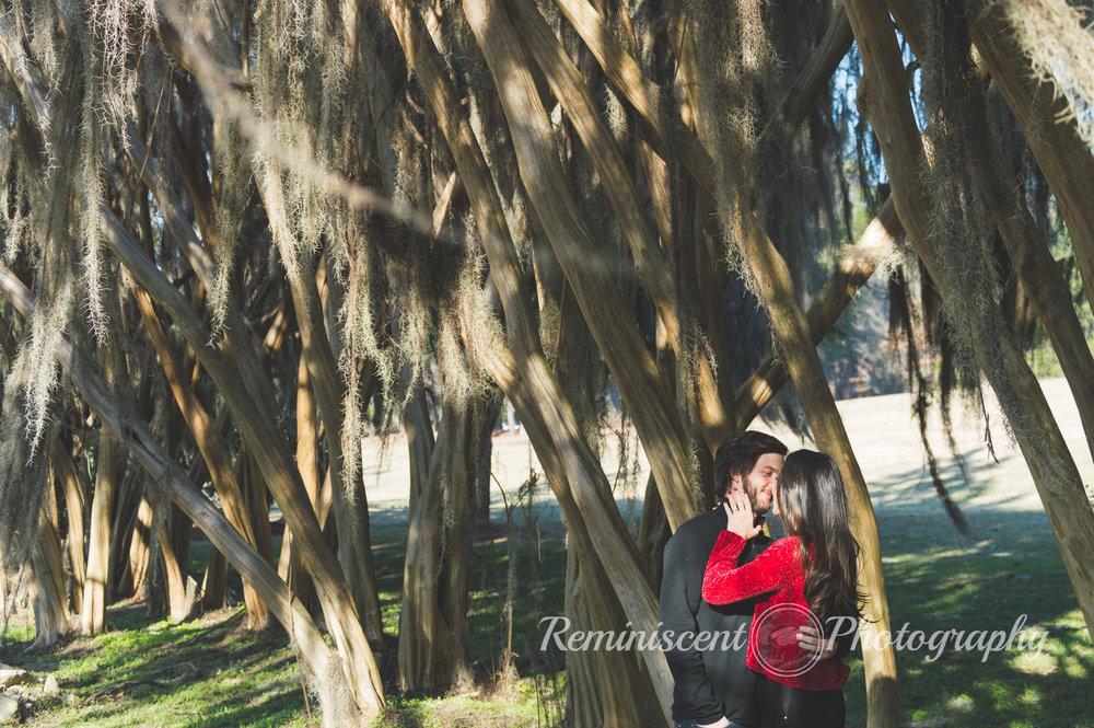 Auburn Wedding Photographer 10