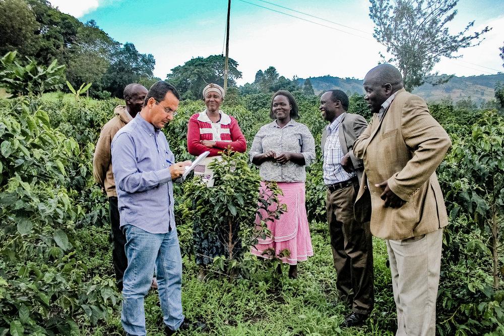 Wanawake katika Kahawa Kenya 083.jpg
