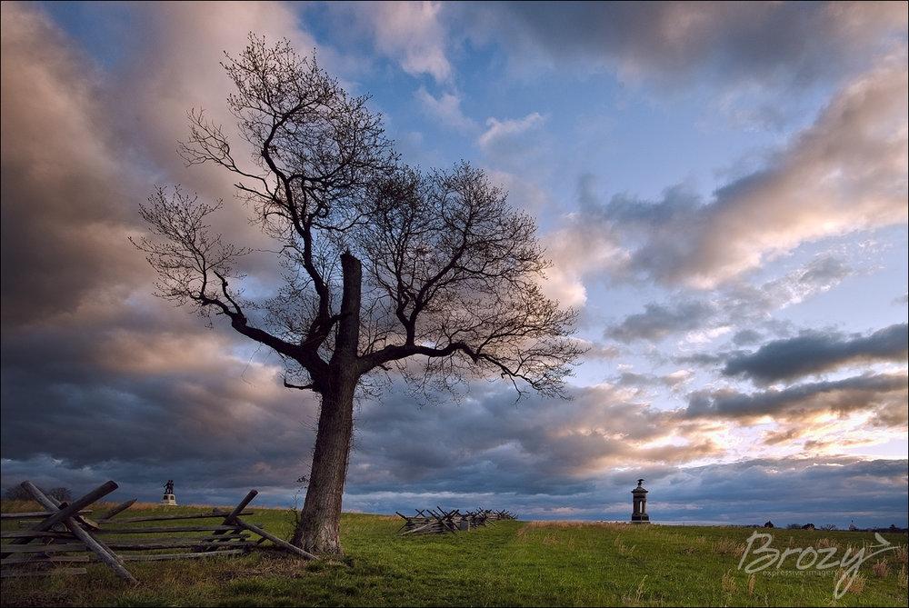 solitude under moody skies