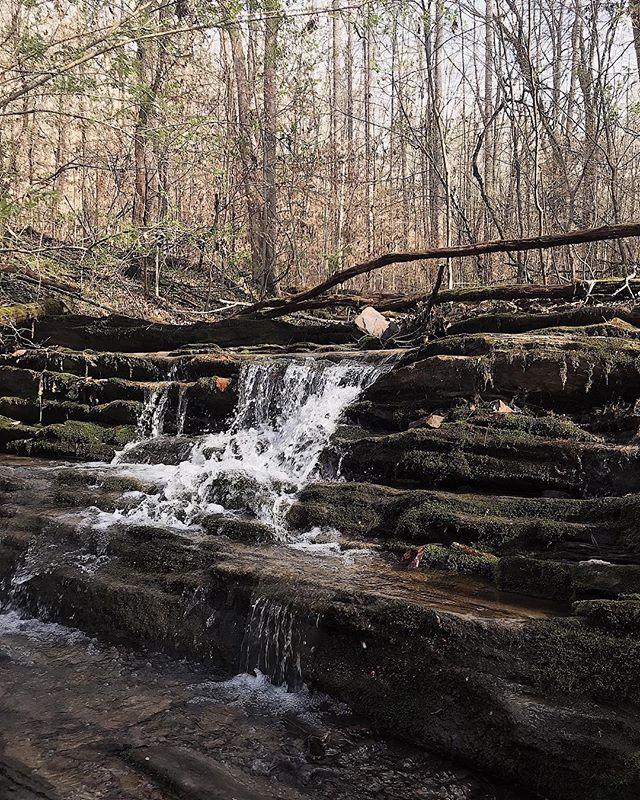 We'll miss this little waterfall, but we have so many new acres to explore at our new spot. Cheers to new adventures, even the ones that happen just outside your door! 🧗♀️🚵♂️ ••• #tour #travel #adventure #wanderlust #fulltimetravel #adventureculture #adventurethatislife #exploremore #neverstopexploring #ohtheplacesyoullgo #letsgoplaces #letsgosomewhere #skoolie #buslifeadventure #busconversion #motorhome #buslife #livewell #whyweadventure #whywelove #visualcoop #pursuepretty #vscocam #campingcollective #ourcamplife #camperlifestyle #diycamper #happycamper #glamping #letscamp