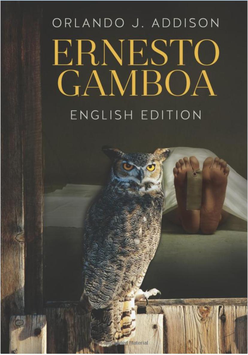 ERNESTO GAMBOA -