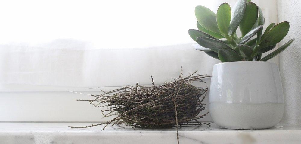 Neu Nest Interiors