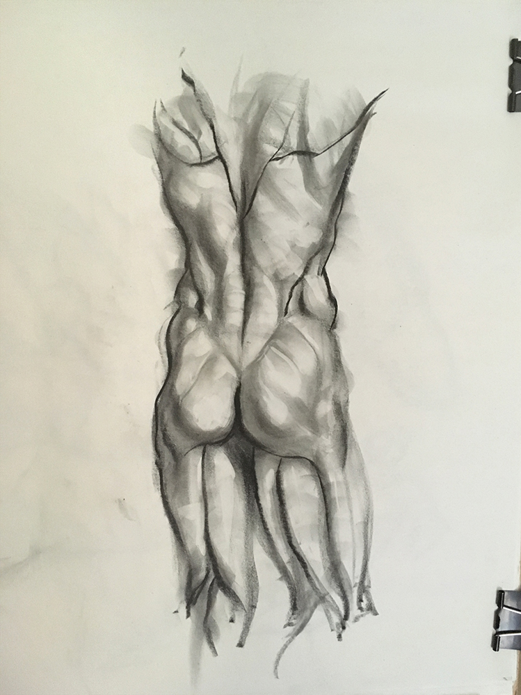 Back Anatomy study from écorché. 2018