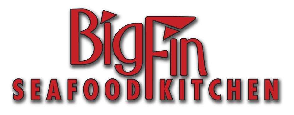 BIG-FIN-LOGO2.jpg