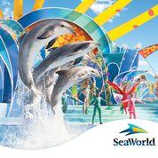 seaworld image.jpg
