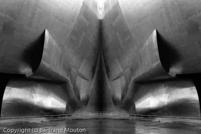 Mouton_010408_001_Composite-Edit.jpg