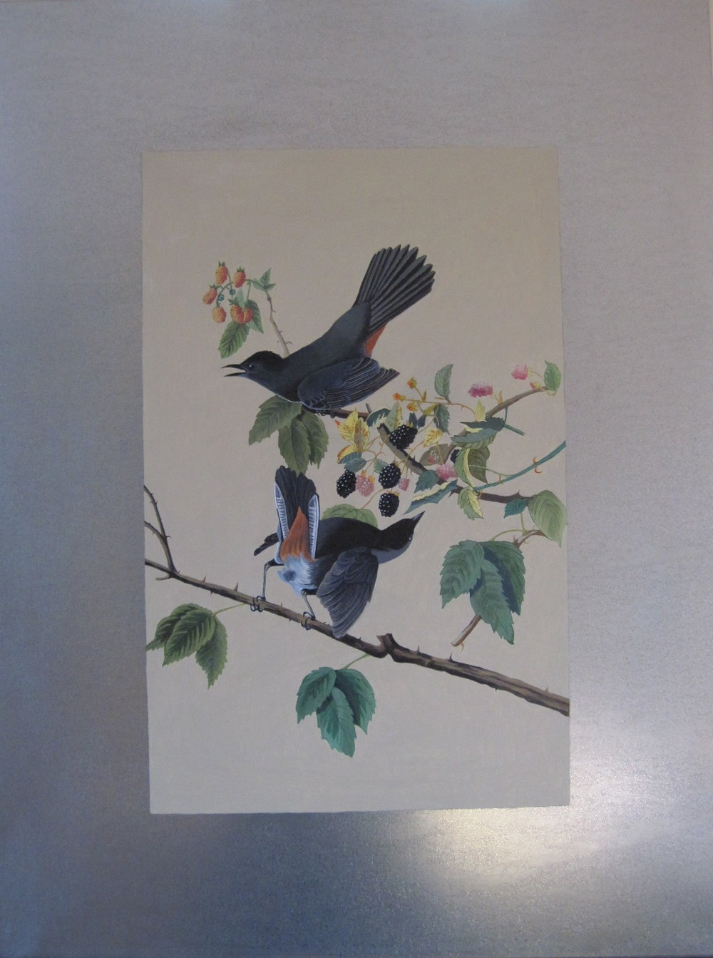 - commissionone of three oil on aluminum paintings of Audubon prints, private residence
