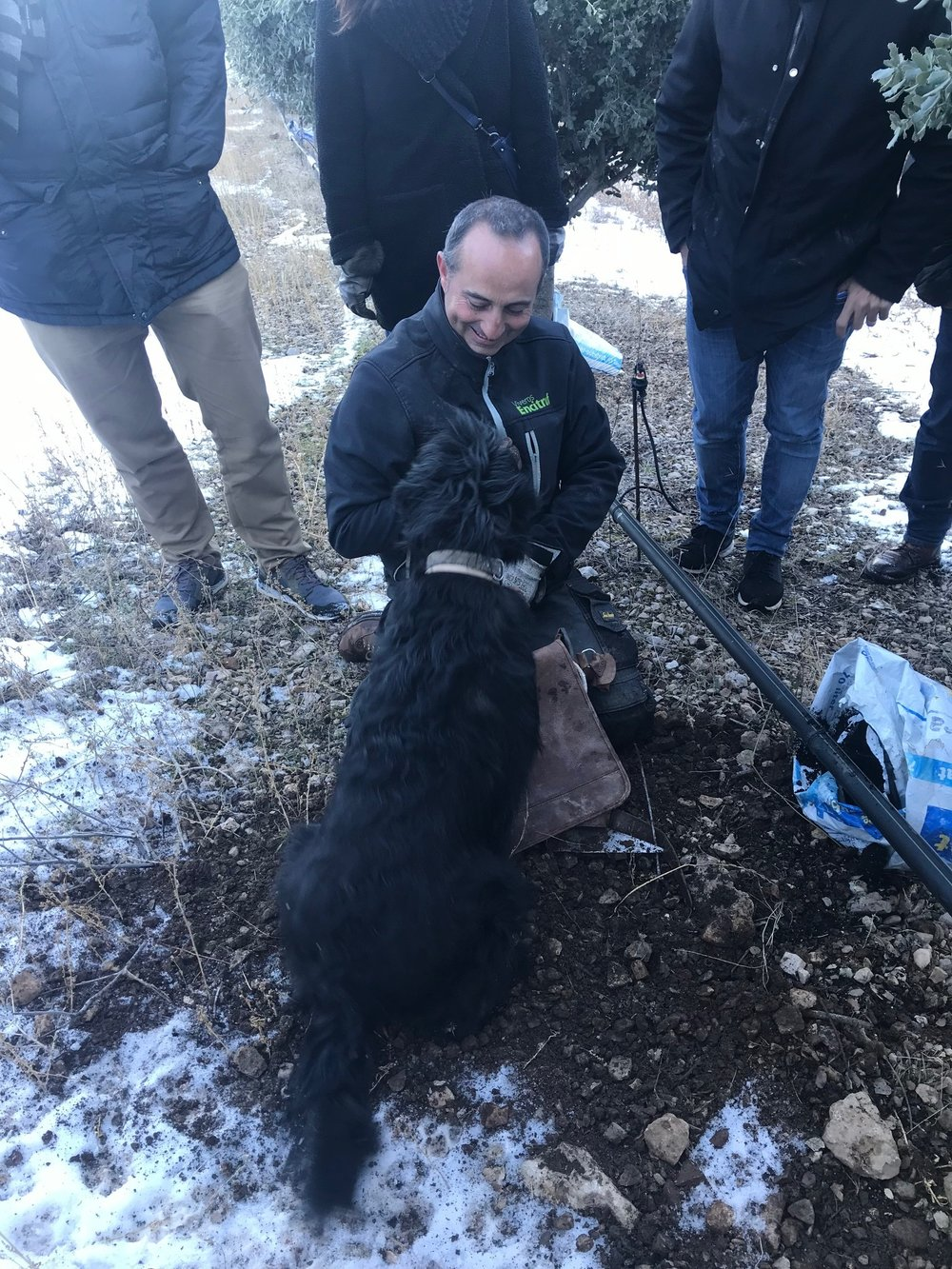I was fortunate enough to participate as a judge in Soria, Spain's first black truffle festival.
