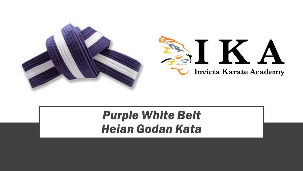 Purple White Belt.jpg