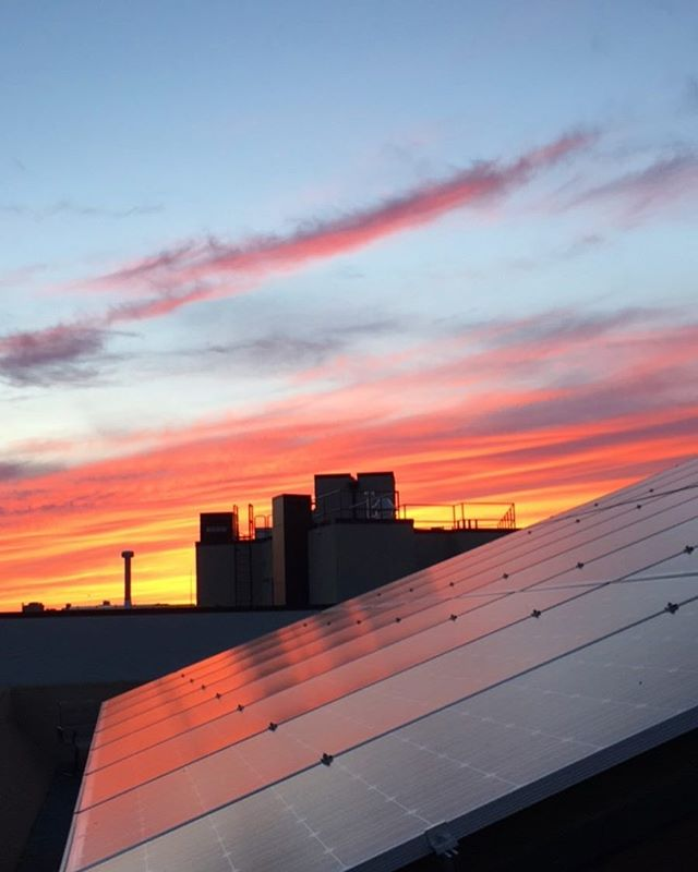 Solar panels and a sunset. #🌅