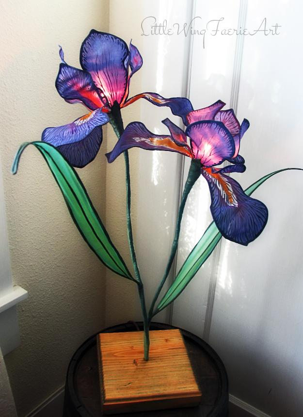 wild iris 3.JPG