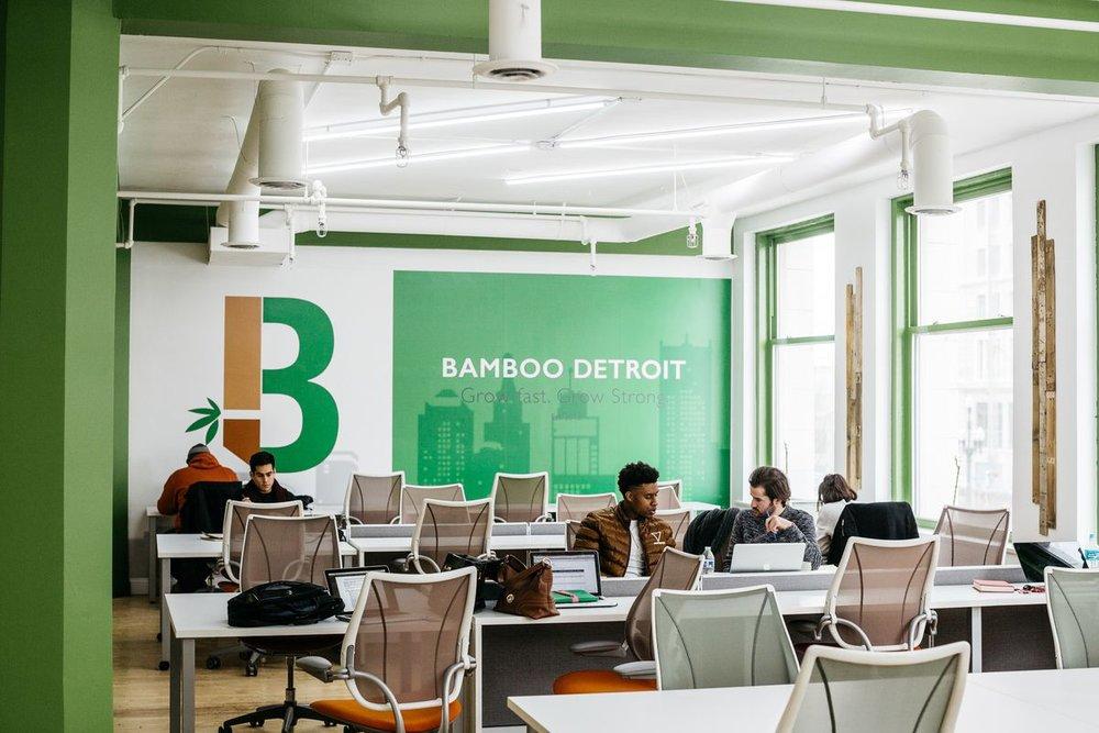 Bamboo Detroit