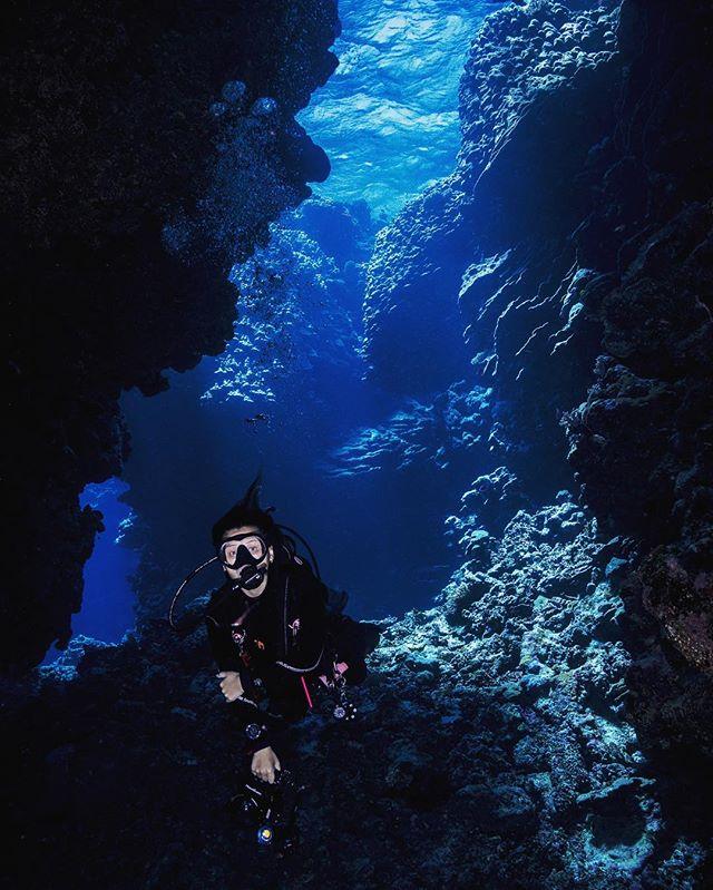 The Labyrinth of Marsa Alam, Red Sea  #underwaterphotography #uwphotography #scubadiving #scuba #underwaterworld #redsea #egypt #sony #nauticamhousings #protecttheocean #travel #travelphotography #picoftheday