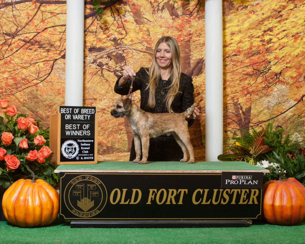 Jackson at the Old Fort Cluster with handler Norma Smith.