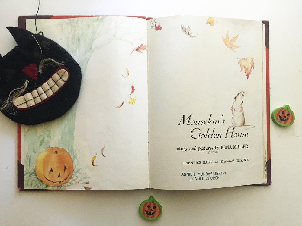 Mousekin#1.jpg