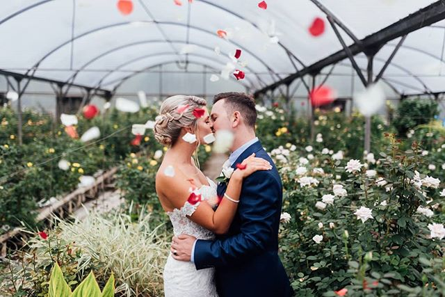 Had such an epic time yesterday celebrating the marriage of Cheyanne and John! We were lucky to take cover from some of the weather at this stunning rose nursery! Shout out to @faycareyphotographer for being an amazing second shooter! @theboathousenz @debbiedelgadocosmetics @wonder_florals @missstellayork @bridalbrilliance @ourlittlekitchenco . . #wedding #weddingphotography #nzphotogs #nzphotographer #christchurchphotographer #rainywedding #hellomay #nzweddings #inlove #Wedo