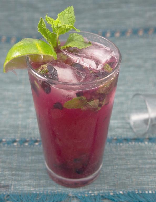 Blueberry Kombucha Vodka Cocktail.jpg