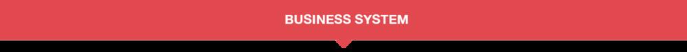 BusinessSystem_Title_Banner.png