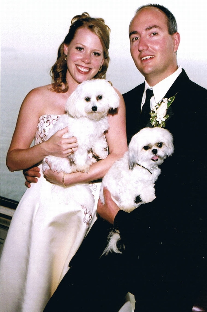 Wedding-Dogs2.jpg