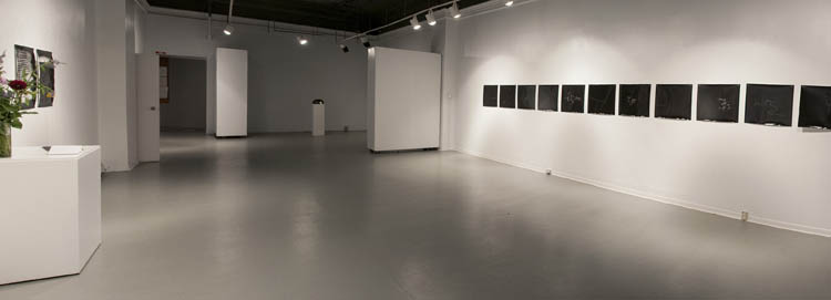 Installation view • 'a line drawn continuously and without looking while you tell your out of body experience', Anna Leonowens Gallery, 2012.