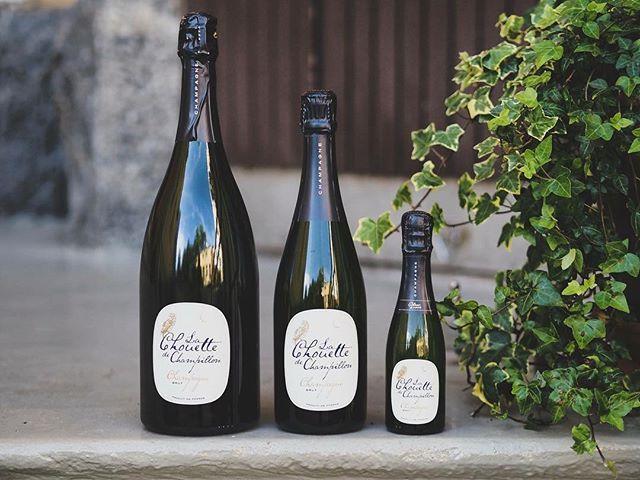 Suomen rakastetuin samppanja Chouette löytyy melkein jokaisen Alkon hyllystä. Tuttu pöllö seikkailee tilausvalikoimassa piccolo-, demi- ja magnum-kokojen lisäksi myös rosén värisenä.  Tilaa tilausvalikoiman tuotteet tänään 20.12. klo 15 mennessä, niin varmistat toimituksen uudeksivuodeksi.  www.champagnechouette.com #pöllösamppanja #champagnechouette
