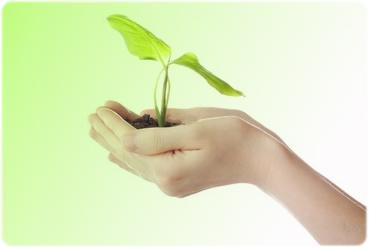 Developing Innovative Ideas for Business Success .jpg