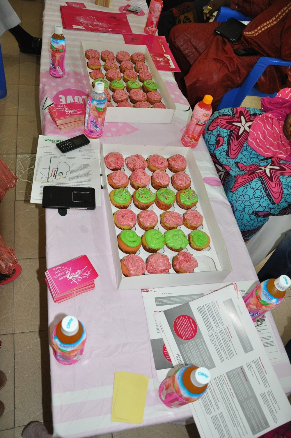 WSD 2017 Pink Picnic photo AKTH-min.jpg
