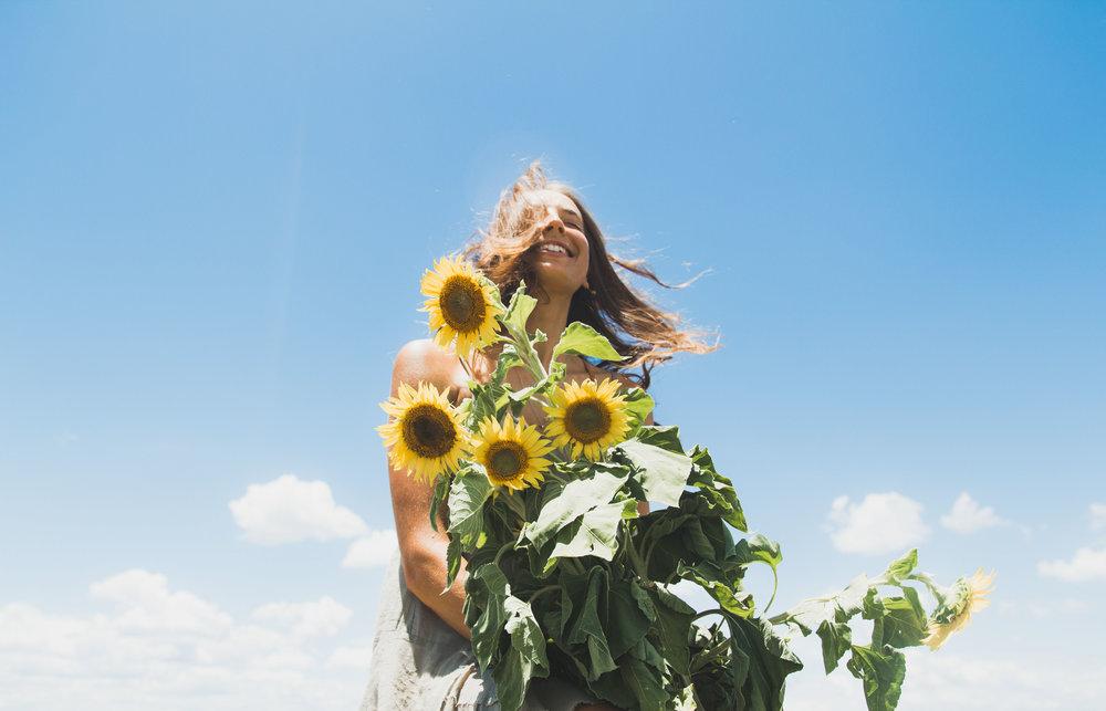 Sunflower WebRes-12.jpg
