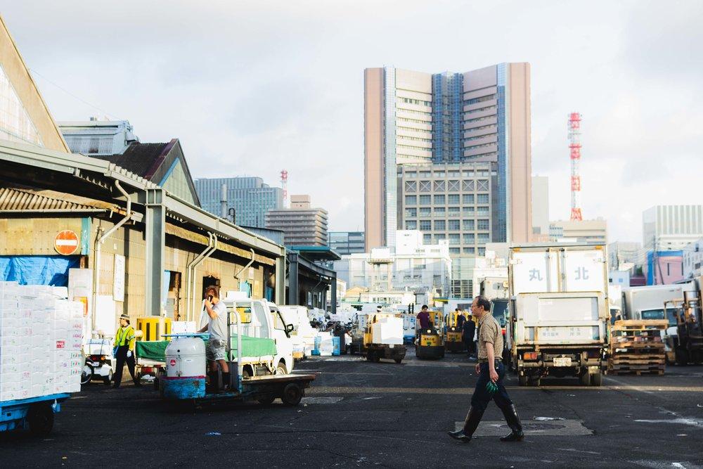 Tsukiji Markets-2.jpg
