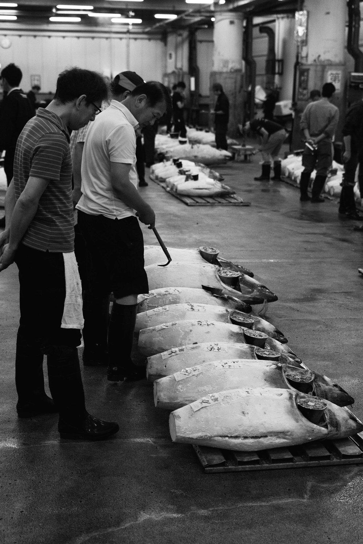Tsukiji Markets-9.jpg