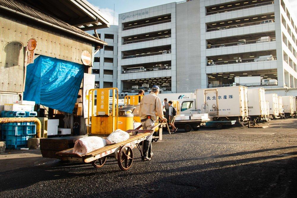 Tsukiji Markets-21.jpg