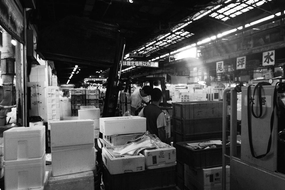 Tsukiji Markets-20.jpg