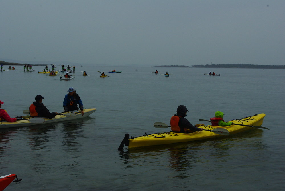 Paddle for Health 2017.JPG