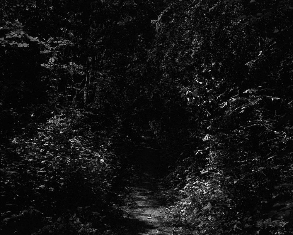 Darkness-At-Noon-1.jpg
