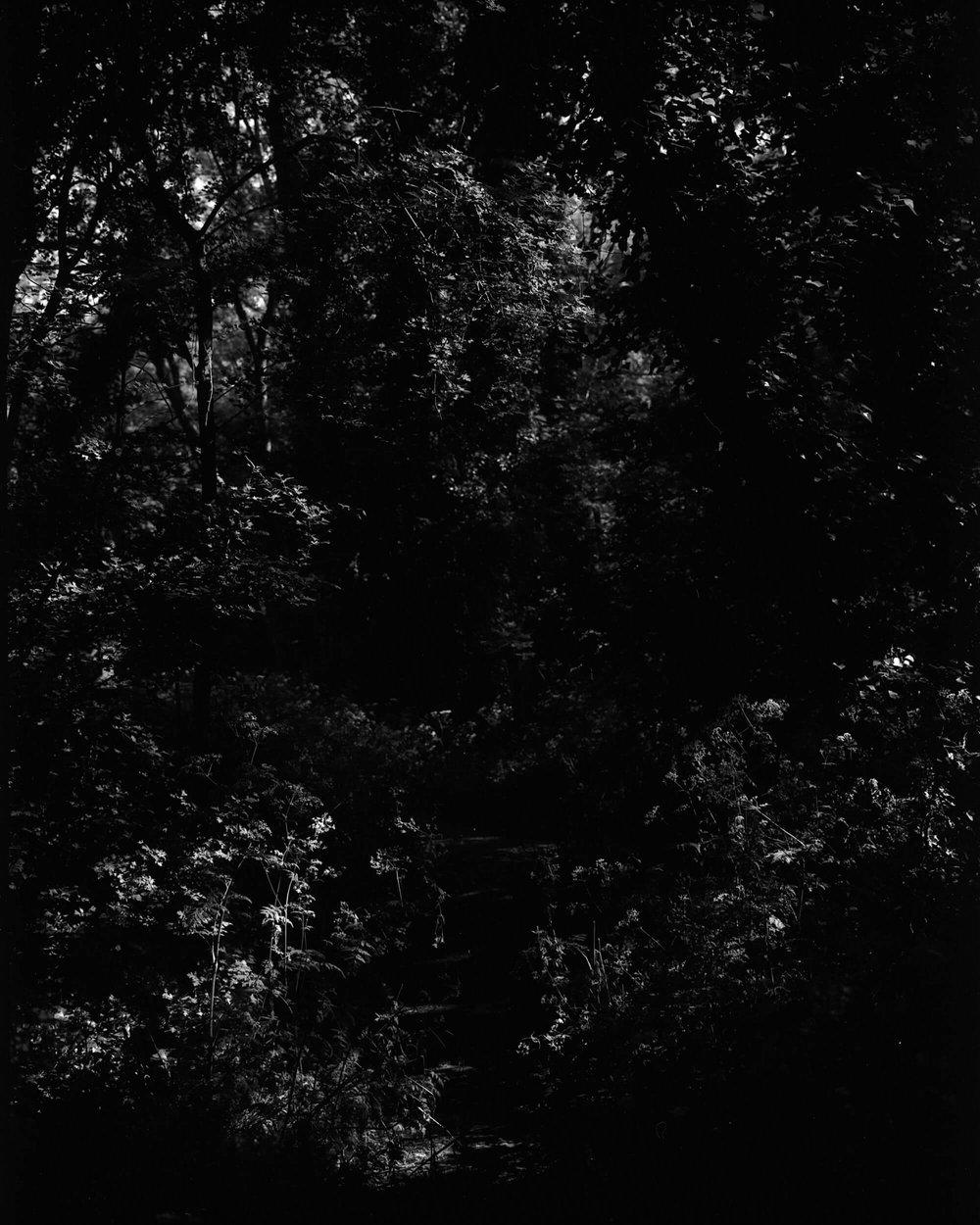 Darkness-At-Noon-4.jpg