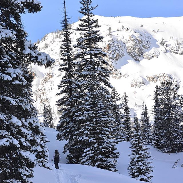 Exploring is the best food for your soul.⠀ .⠀ .⠀ .⠀ #realadventuredesign #explore #benchhut #idahoskiing #earnyourturns #backcountry #ski #makewinterdeepagain⠀  #humpday