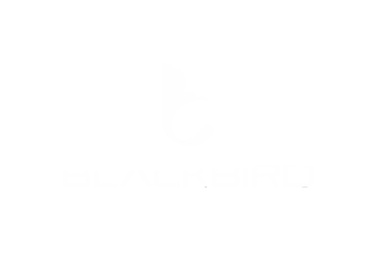 Blackbird Aerial & Co