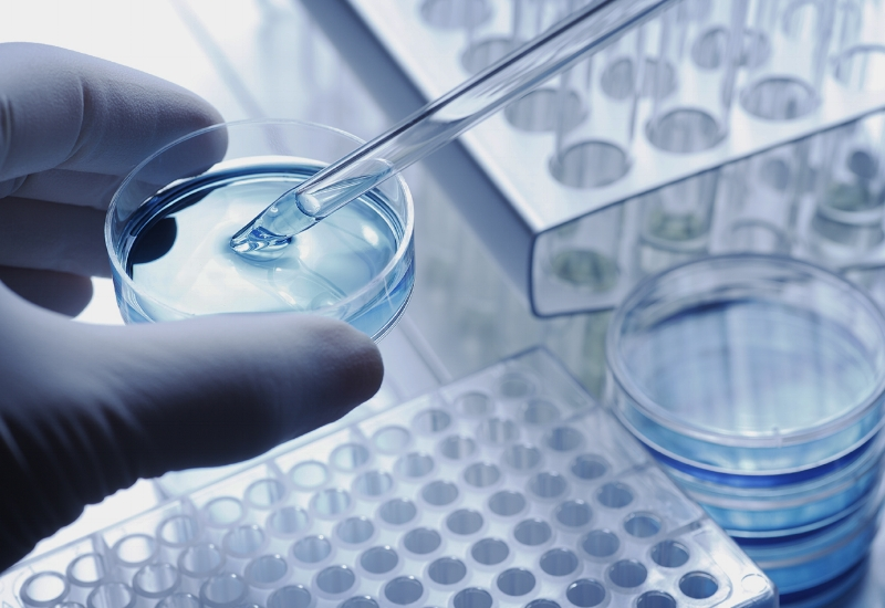 Precision BP - Precision is a research and development driven organization focused on developing complex treatments in rare genetic oncology diseases.
