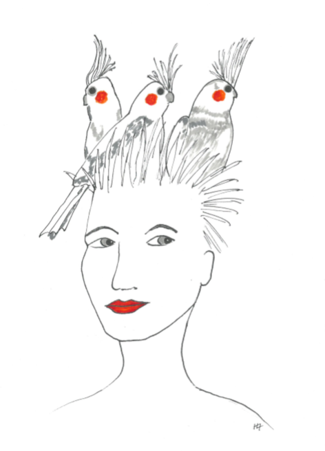 Cockatiels and Bold Women - An Anthology to raise money for St. Giles is available now!! - Visit the shop page for more info here