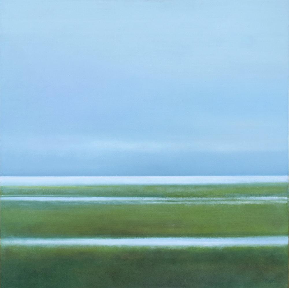 Marshes. Horizon 11