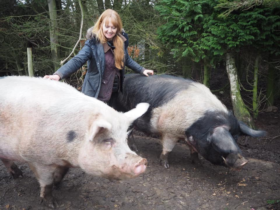 Sharon and some of her pigs