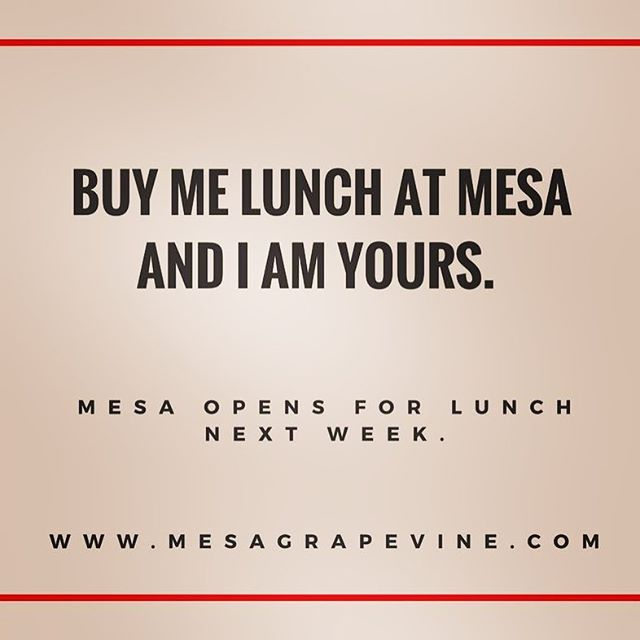 Mesa Kitchen is now open for LUNCH!