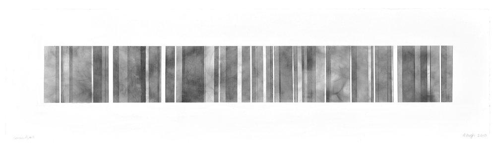 Barcode, Series D, 11, 2018.jpg
